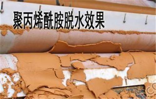 黔西南-啤酒厂污水处理专用聚丙烯酰胺